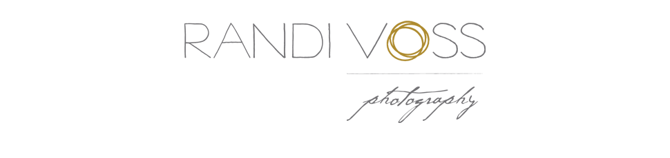 Pittsburgh Wedding Photography | Randi Voss Photography logo